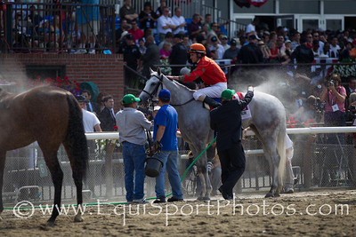 Tapitsfly with Ramon Dominguez aboards gets hosed off after winning the 19th running of The Longines Just a Game (Gr. I).  Tapitsfly (Tapit) is trained by D. L. Romans and is owned by Frank L. Jones, Jr.