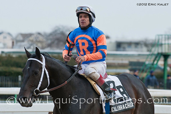 Calibrachoa, Cornelio Velasquez up, trained by Todd Pletcher and owned by Repole Stables, wins the rade III Toboggan Stakes at Aqueduct Racetrack in Ozone Park, NY on 2/4/2012.
