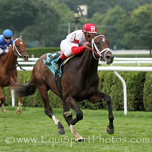 Charming Kitten (Kitten's Joy) and jockey Javier Castellano win a MSW at Saratoga Racecourse 7/28/12. Trainer: Todd Pletcher. Owner: Kenneth and Sarah Ramsey
