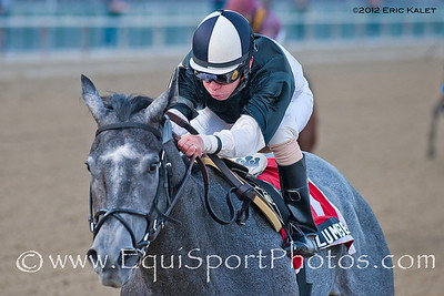 The Lumber Guy (Grand Slam), Mike Luzzi up, wins the 2012 Grade II Jerome Stakes at Aqueduct Racetrack.