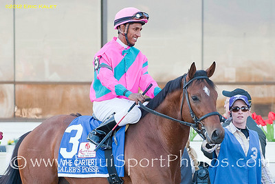 Caleb's Posse (Posse), heads out onto the track for the GI Carter Handicap Stake at Aqueduct Racetrack in New York.