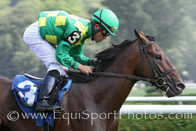 Craving Carats (Street Sense) and jockey Joel Rosario win a MSW at Saratoga Racecourse 8/4/12. Trainer: Dale Romans. Owner: Donegal Racing