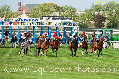 Turf Racing at Aqueduct Racetrack in Ozone Park, New York.