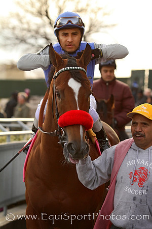 Goldencents (Into Mischief) and jockey Rafael Bejarano before the Cigar Mile (Gr I) at Aqueduct Racetrack 11/30/13. Trainer: Doug O'Neill. Owner: W C Racing