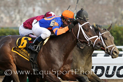 Stopchargingmaria (Tale of the Cat) and jockey Javier Castellano win the Demoiselle (Gr II) at Aqueduct Racetrack 11/30/13. Trainer: Todd Pletcher. Owner: Repole Stable