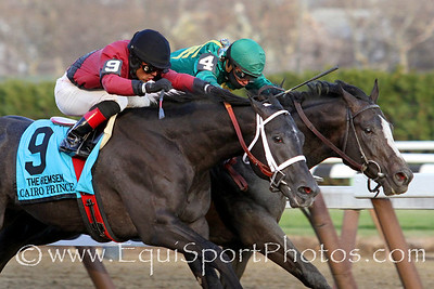 Honor Code (A.P. Indy) and jockey Javier Castellano win the Remsen (Gr II) at Aqueduct Racetrack 11/30/13. Trainer: Claude McGaughey. Owner: Lane's End Racing & Dell Ridge Farm