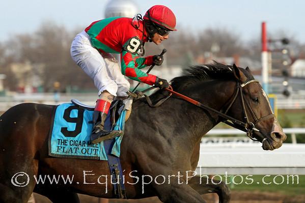Flat Out (Flatter) and jockey Junior Alvarado win the Cigar Mile (Gr I) at Aqueduct Racetrack 11/30/13. Trainer: Bill Mott. Owner: Preston Stables