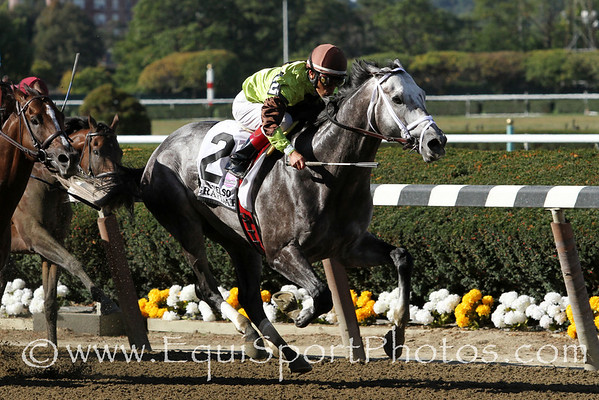 Graydar (Unbridled's Song) and jockey Edgar Prado win the Kelso (Gr II) at Belmont Park 9/28/13. Trainer: Todd Pletcher. Owner: Twin Creeks Racing Stables