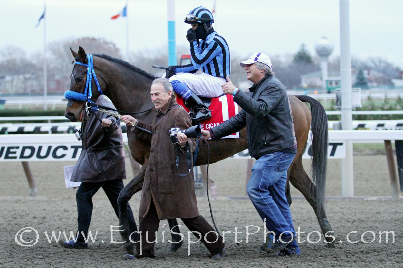 Private Zone (Macho Uno) and jockey Martin Pedroza win the Cigar Mile (Gr I) at Aqueduct Racetrack 11/29/14. Trainer: Alfredo Velazquez. Owner: Good Friends Stable