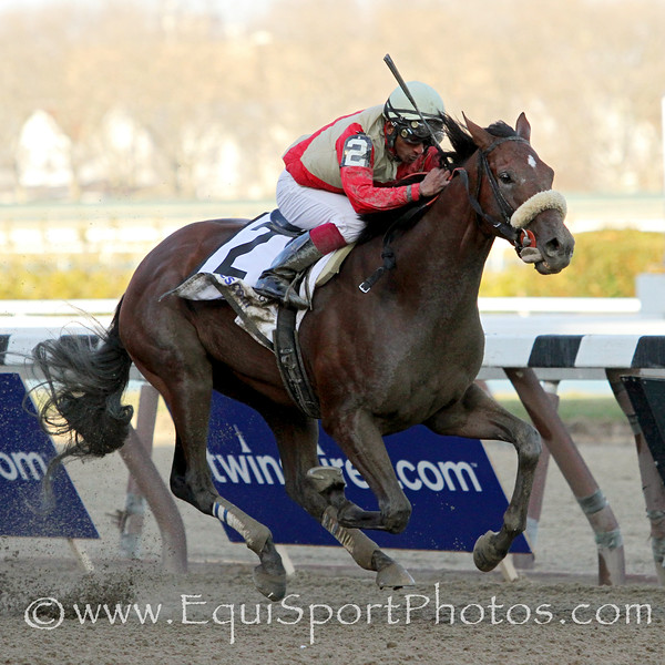 Wicked Strong (Hard Spun) and jockey Rajiv Maragh win the Wood Memorial (Gr I) at Aqueduct Racetrack 4/5/14. Trainer: Jimmy Jerkens. Owner: Centennial Farms