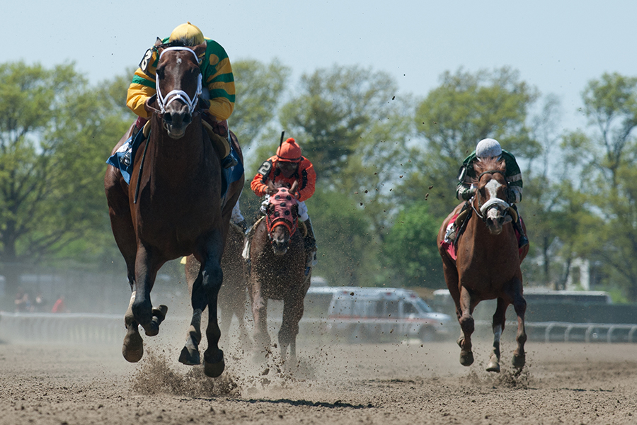 Palace Malice (Curlin) and jockey John Velazquez win The (Gr.III) Westchester at Belmont Park 05/11/14 Trainer: Todd Pletcher.  Owner Dogwood Stable .Bud Morton/Equisport Photo