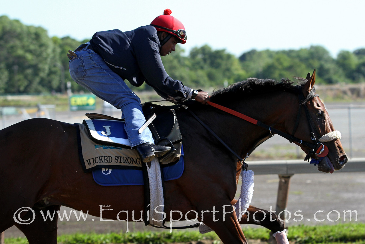 Wicked Strong (Hard Spun) trains for the Belmont Stakes (Gr I) at Belmont Park 6/6/14. Trainer: Jimmy Jerkens. Owner: Centennial Farms