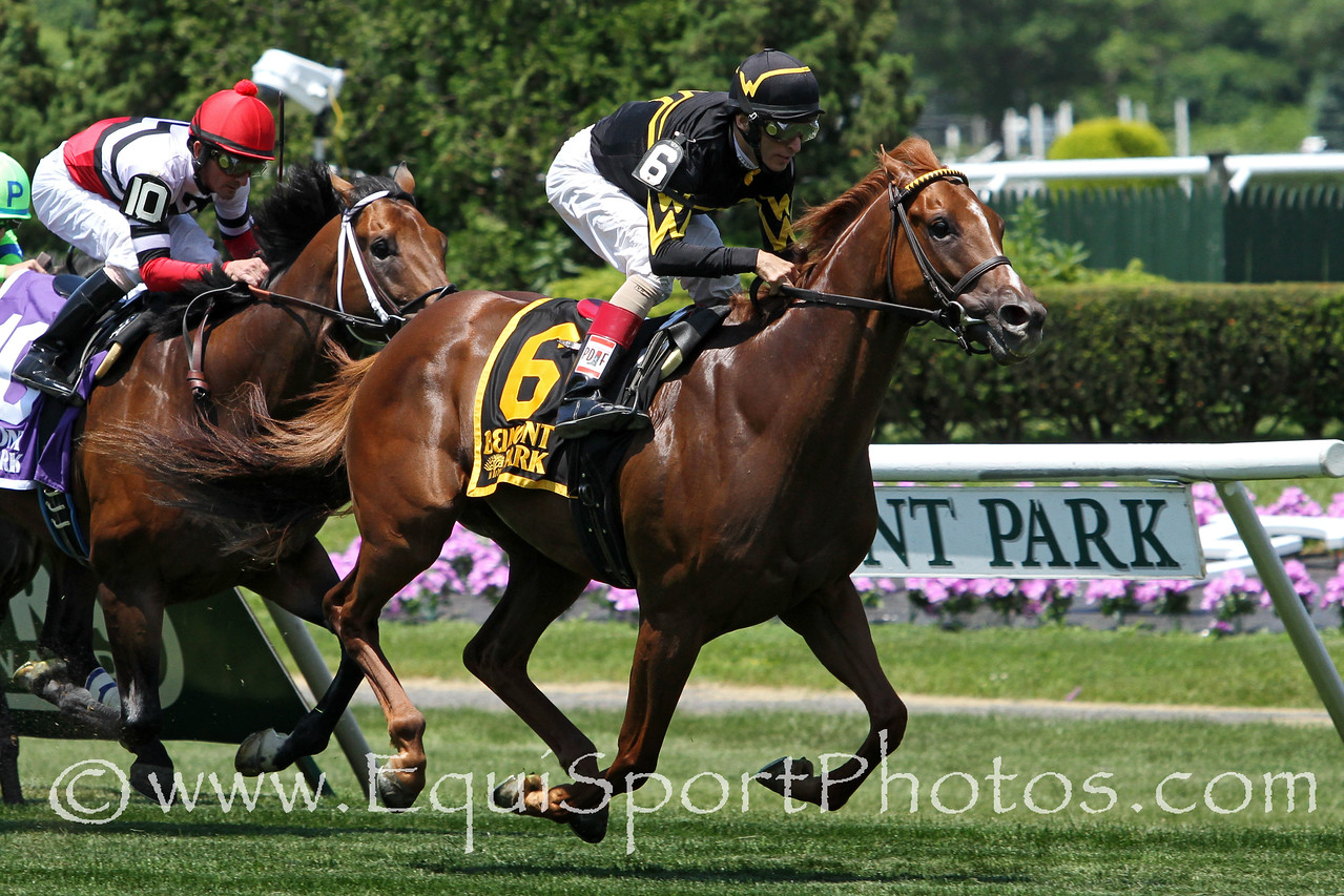 Undrafted (Purim) and jockey John Velazquez win the Jaipur Invitational (Gr II) at Belmont Park 6/7/14. Trainer: Wesley Ward. Owner: Wes Welker