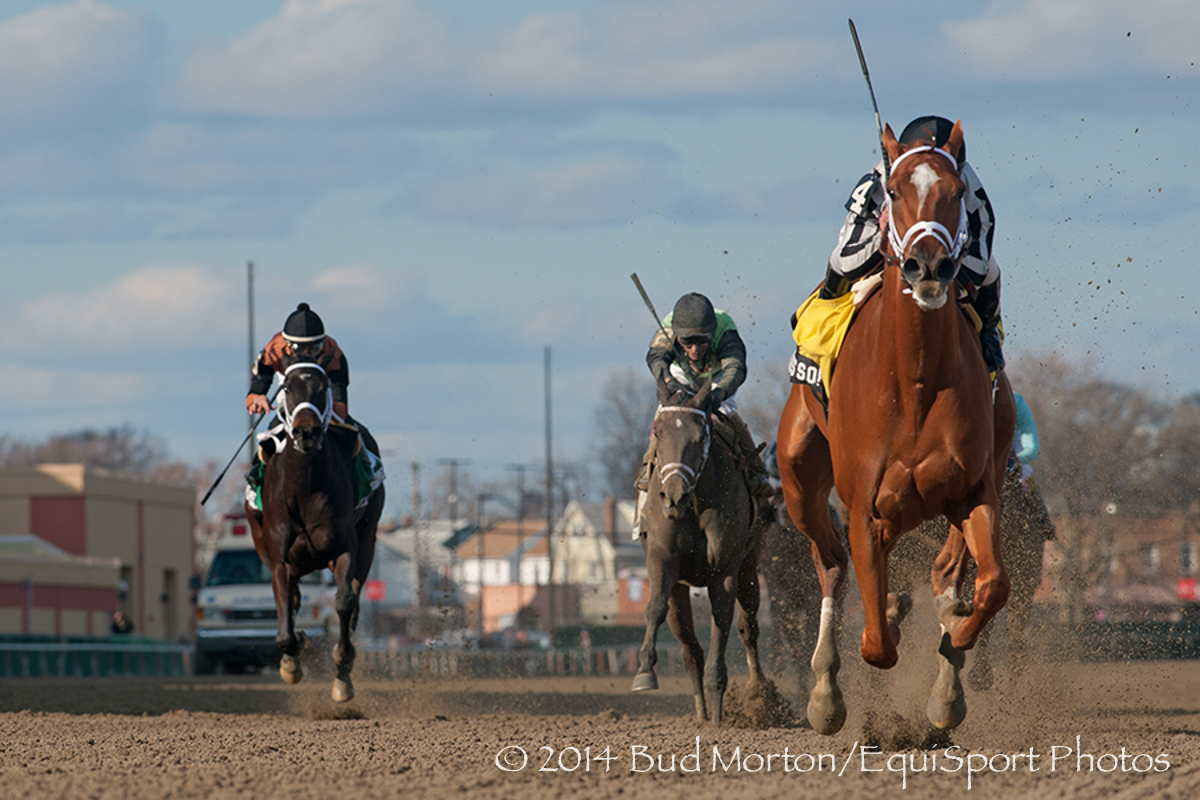 My Miss Sophia (Unbridled's Song) and jockey Javier Castellano win The (Gr.II) Gazelle at Aqueduct 04/05/14 Trainer: Todd A Pletcher  Owner :Mathis Stables LLCi.  Bud Morton/ Equisport Photo