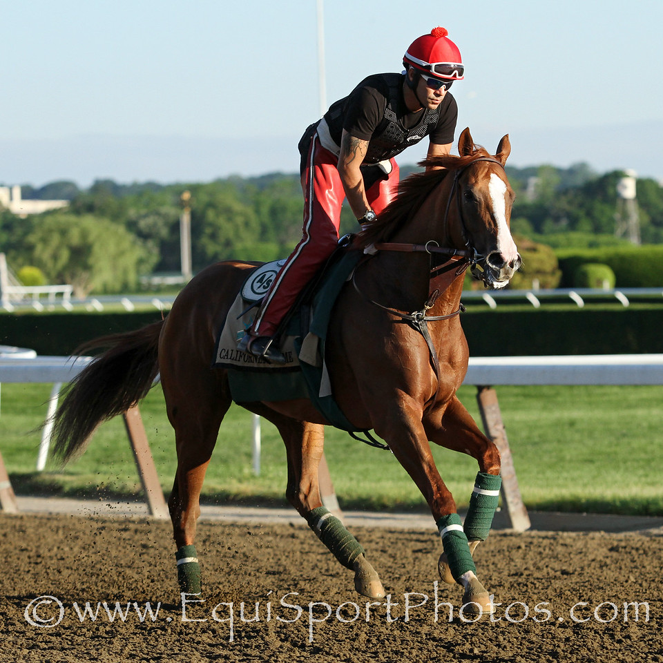 California Chrome (Lucky Pulpit) and jockey Victor Espinoza train for the Belmont Stakes (Gr I) at Belmont Park 6/6/14. Trainer: Art Sherman. Owner: Steven Coburn & Perry Martin