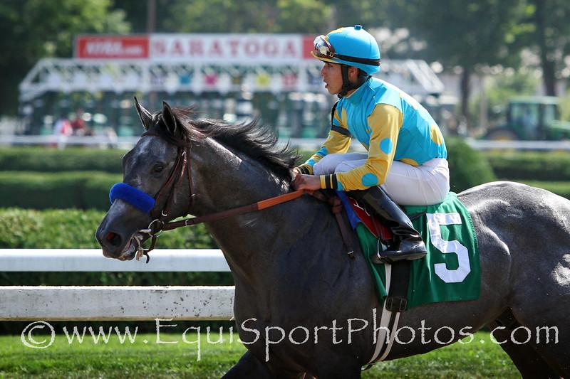 El Kabeir (Scat Daddy) and jockey Irad Ortiz Jr win a MSW at Saratoga Racecourse 8/30/14. Trainer: John Terranova. Owner: Zayat Stables LLC