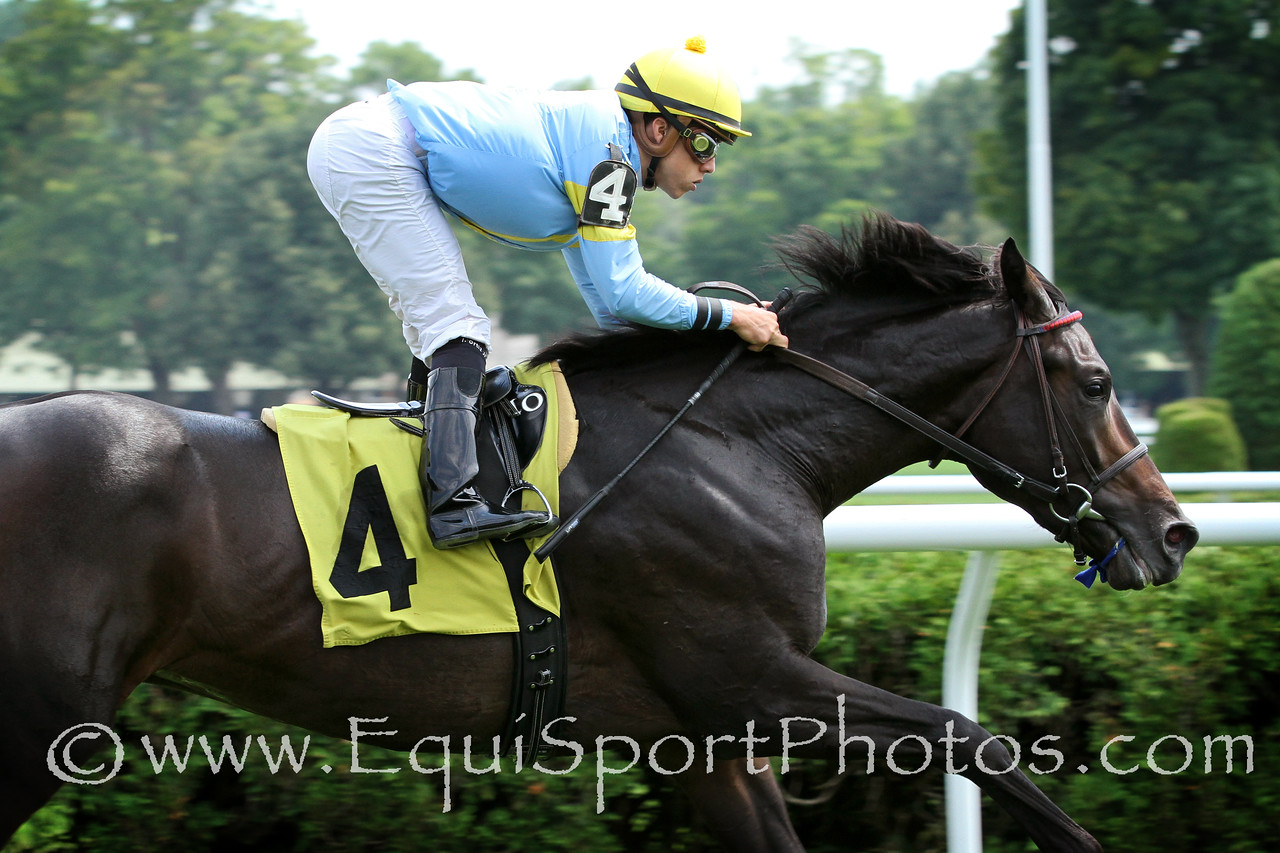 Strong Coffee (Warrior's Reward) and jockey Irad Ortiz Jr. win a MSW at Saratoga Racecourse 8/2/14. Trainer: Graham Motion. Owner: Albert Frassetto
