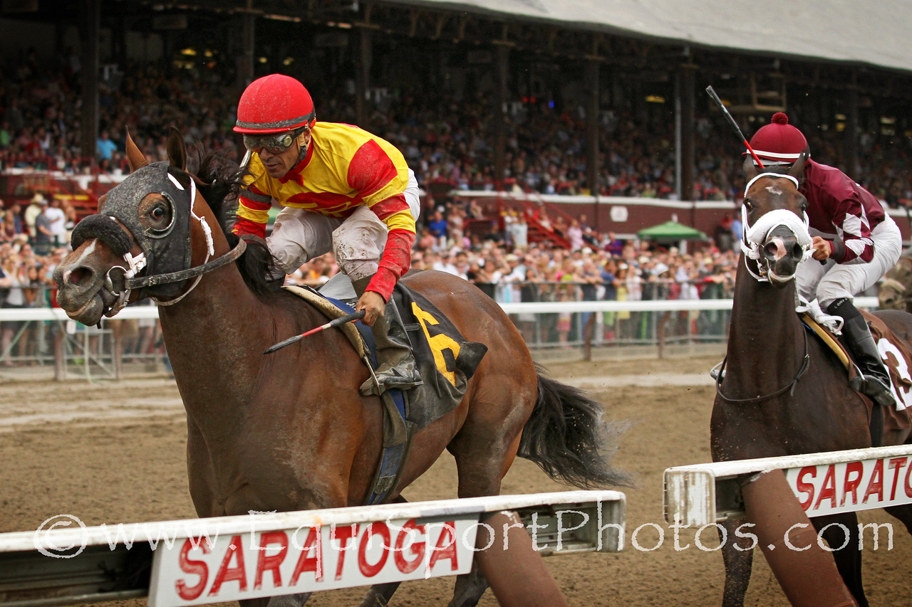 Dream Saturday (Any Given Saturday) and jockey Cornelio Velasquez win an allowance at Saratoga Racecourse 8/16/14. Trainer: Michelle Nevin. Owner: Top Racing