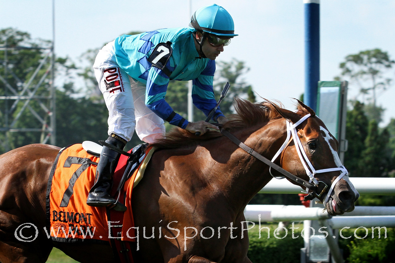 Cabo Cat (Kitten's Joy) and jockey Joe Bravo win the Manila Stakes at Belmont Park 6/28/14. Trainer: Mark Hennig. Owner: Lee Lewis