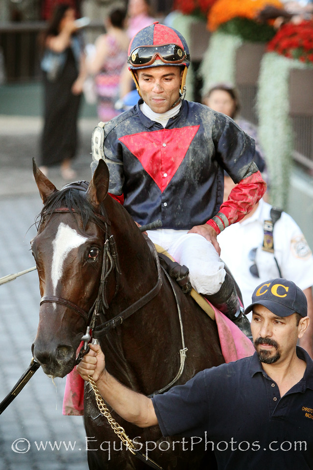 Tonalist (Tapit) and jockey Joel Rosario win the Jockey Club Gold Cup (Gr I) at Belmont Park 9/27/14. Trainer: Christophe Clement. Owner: Robert Evans