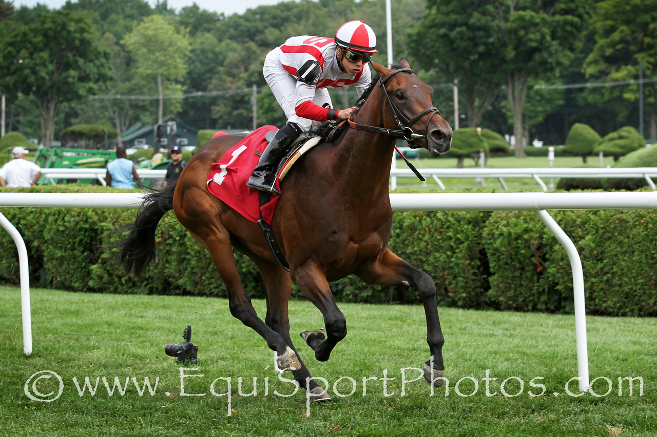Can't Happen Here (Desert Party) and jockey Irad Ortiz Jr win a MSW at Saratoga Racecourse 8/16/14. Trainer: Chad Brown. Owner: Klaravich Stables