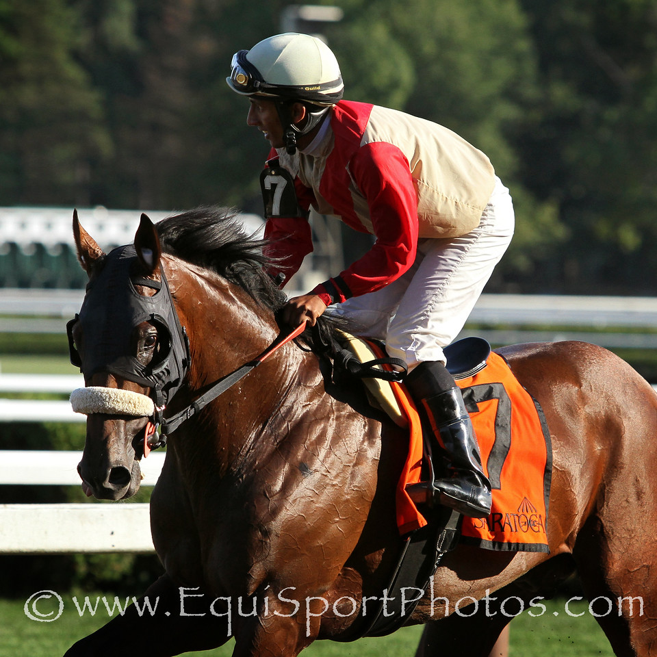 Wicked Strong (Hard Spun) and jockey Rajiv Maragh win the Jim Dandy (Gr II) at Saratoga Racecourse 7/26/14. Trainer: Jimmy Jerkens. Owner: Centennial Farms