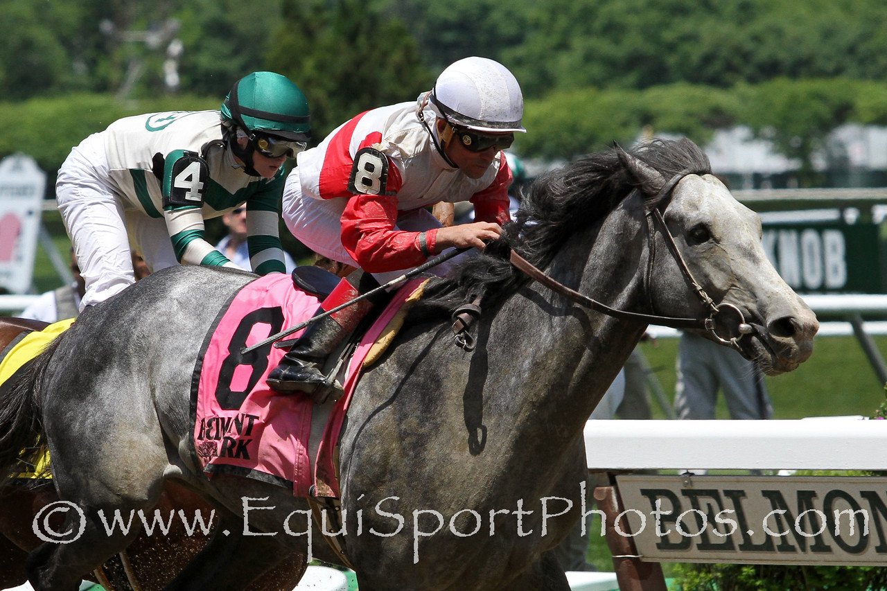 Norumbega (Tiznow) and jockey Joel Rosario win the Brooklyn Invitational (Gr II) at Belmont Park 6/7/14. Trainer: Claude McGaughey. Owner: Stuart Janney