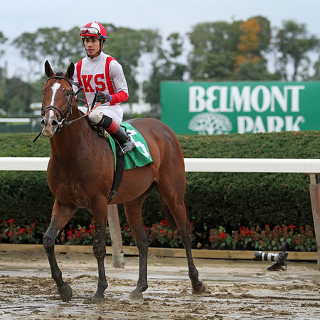 Takeover Target (Harlan's Holiday) and jockey Jose Ortiz win the Hill Prince (Gr III) at Belmont Park 10/3/15. Trainer: Chad Brown. Owner: Klaravich Stables