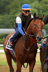 American Pharoah (Pioneerof the Nile) trains for the Belmont Stakes (Gr 1) at Belmont Park 6/5/15. Trainer: Bob Baffert. Owner: Zayat Stables
