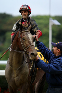 Tonalist (Tapit) and jockey John Velazquez win the Jockey Club Gold Cup (Gr I) at Belmont Park 10/3/15. Trainer: Christophe Clement. Owner: Robert S. Evans