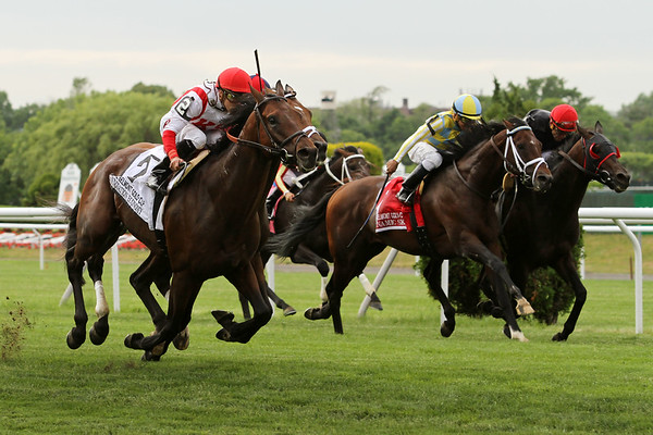 Innovation Economy (Dynaformer) and jockey Irad Ortiz Jr win the Belmont Gold Cup Invitational at Belmont Park 6/5/15. Trainer: Chad Brown. Owner: Klaravich Stable