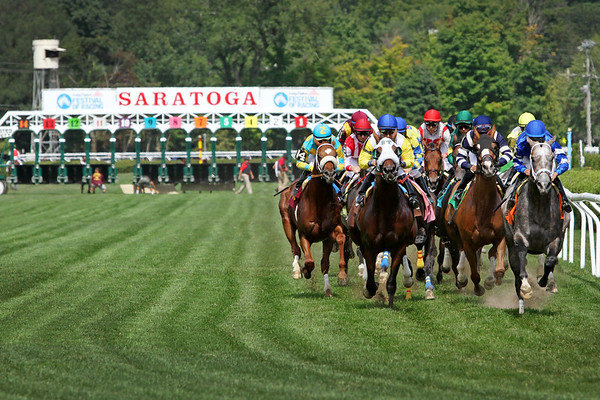 Turf racing at Saratoga Racecourse 8/8/15.