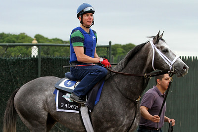 Frosted (Tapit) trains for the Belmont Stakes (Gr 1) at Belmont Park 6/5/15. Trainer: Kieran McLaughlin. Owner: Godolphin Racing LLC