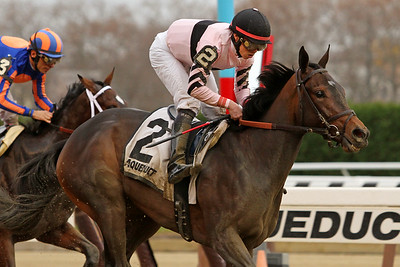 Lewis Bay (Bernardini) and jockey Irad Ortiz Jr. win the Demoiselle (Gr II) at Aqueduct Racetrack 11/28/15. Trainer: Chad Brown. Owner: Alpha Delta Stables