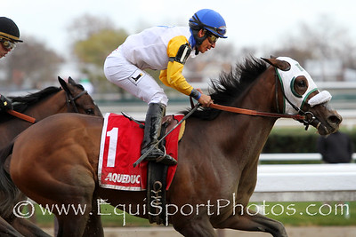 Verve's Tale (Tale of Ekati) and jockey Paco Lopez win the Comely (Gr III) at Aqueduct Racetrack 11/26/16. Trainer: Barclay Tagg. Owner: Charles Fipke