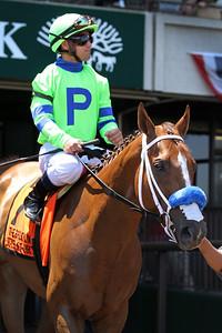 War Story (Northern Afleet) and jockey Javier Castellano win the Brooklyn Invitational (Gr II) at Belmont Park 6/10/17. Trainer: Jorge Navarro. Owner: Loooch Racing Stables Inc