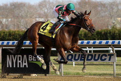 Positive Spirit (Pioneerof the Nile) and jockey Manny Franco win the Demoiselle (Gr II) at Aqueduct Racetrack 12/1/18. Trainer: Rodolphe Brisset. Owner: Micheal J. Ryan