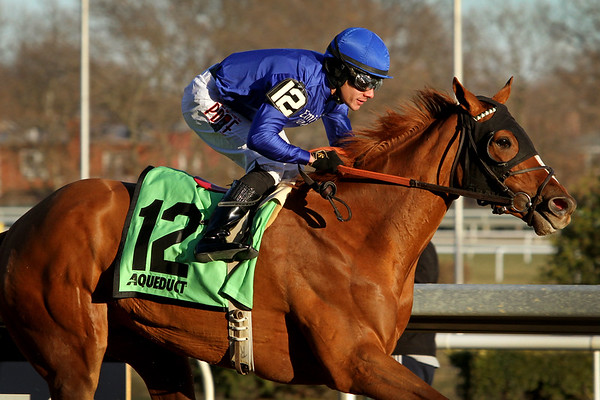 Lake Avenue (Tapit) and jockey Junior Alvarado win the Demoiselle (Gr I) at Aqueduct Racetrack 12/7/19. Trainer: Bill Mott. Owners: Godolphin Stable