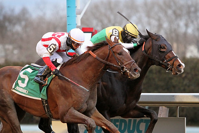 Weyburn (Pioneerof the Nile) (inside) and jockey Trevor McCarthy win the Gotham (Gr III) at Aqueduct Racetrack 3/6/21. Trainer: Jimmy Jerkens. Owner: Chiefswood Stables Limited