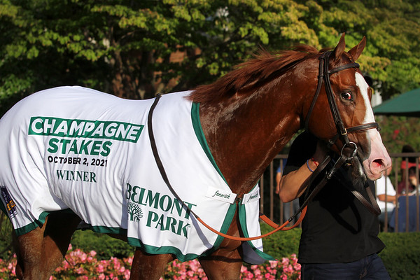 Jack Christopher (Munnings) and jockey Jose Ortiz win the Champagne Stakes (Gr 1) at Belmont Park 10/2/21. Trainer: Chad Brown. Owner: S. Bradford Rives, Annie Jessee, T. Richard Riney & Diane Jessee
