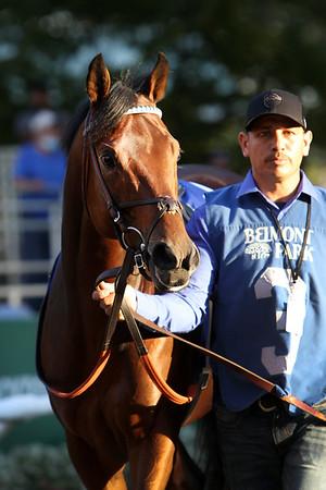 Art Collector (Bernardini) and jockey Luis Saez win the Woodward (Gr 1) at Belmont Park 10/2/21. Trainer: Bill Mott. Owner: Bruce Lunsford