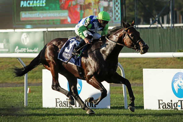Arrest Me Red (Pioneerof the Nile) and jockey Irad Ortiz, Jr. win the Belmont Turf Sprint Invitational (Gr III) at Belmont Park 10/2/21. Trainer:Wesley Ward. Owner: Lael Stables