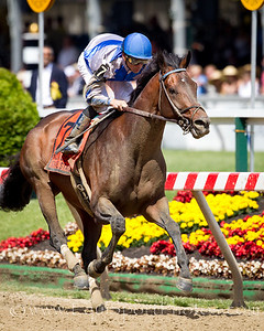 Blame (Arch), Garrett Gomez up, wins the William Donald Schaefer S. at Pimlico Park 5.15.2010wu