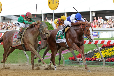 Shackleford (Foresty) and jockey Jesus Castanon win the Preakness Stakes (Gr. I) at Pimlico Racecourse 5/21/11. Dale Romans trainer, Michael Lauffer and W.D. Cubbedge owners JH.