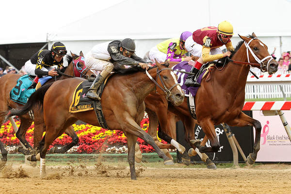 R Holiday Mood (Trippi) and jockey John Velazquez win the Miss Preakness Pink Warrior Stakes at Pimlico Racecourse 5/20/11. Todd Pletcher trainer, E. Paul Robsham Stables owner