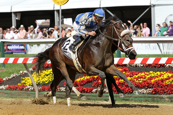 Apart (Flatter) and jockey Garrett Gomez win the William Donald Schaefer Memorial Stakes (Gr. III) at Pimlico Racecourse 5/21/11. Al Stall trainer, Adele Dilschneider owner JH.