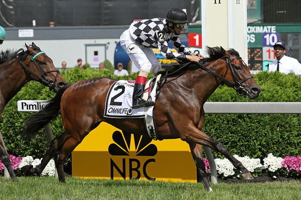 No Explaining (Azamour) and jockey John Velazquez win the Gallorette Handicap (Gr. III) at Pimlico Racecourse 5/21/11. Roger Attfield trainer, Harlequin Ranches owner JH.