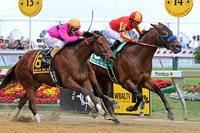 Ventana (Toccet) and jockey Martin Garcia win the Maryland Sprint Handicap (Gr. III) at Pimlico Racecourse 5/21/11. Bob Baffert trainer, Michael Pegram owner.