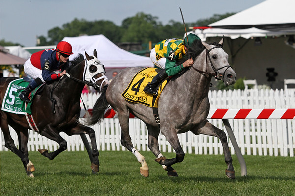 Paddy O'Prado (El Prado) and jockey Kent Desormeaux win the Dixie Stakes (Gr. II) at Pimlico Racecourse 5/21/11. Dale Romans trainer, Donegal Racing owner.