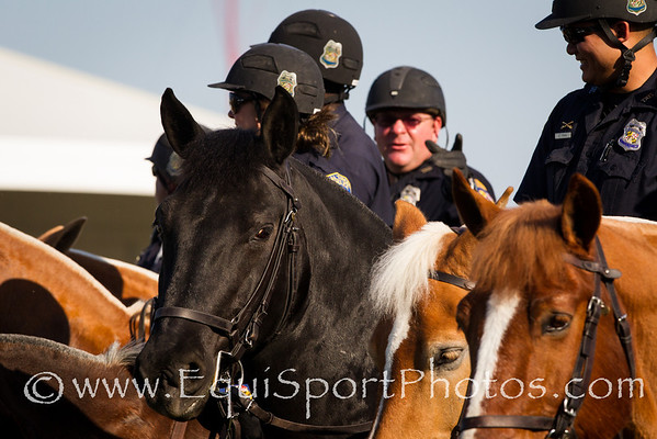 Equine Officers at Pimlico 5.19.2012